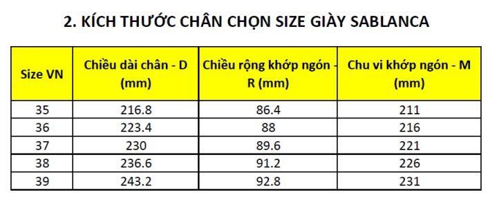 huong-dan-chon-size-giay